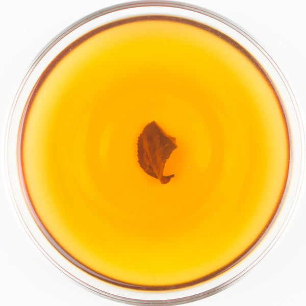 Alishan Transitional Organic GABA Oolong Tea