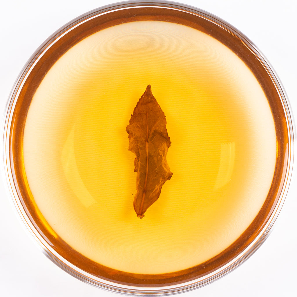 "Songboling Organic Baxiang ""Immortal Eight"" Oolong Tea - Spring 2020"