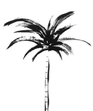 Allia Palm Collection