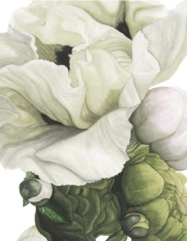 Chapelle Floral Collection (CANVAS)