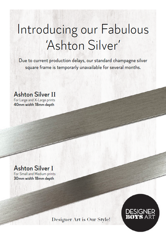 Ashton Silver Alternative Frame Option for Champagne Silver Round and Square