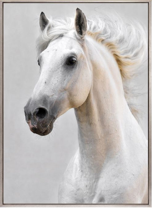 MAJESTIC THOROUGHBRED VI (CANVAS) - DESIGNERS CANDY