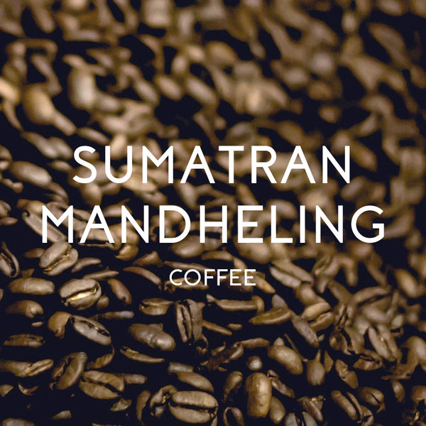 Sumatran Mandheling Coffee - Organic & Fair Trade Certified