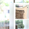 Latte Love (beige) & Zulu Leopard print handbag dust bags displayed on shelf
