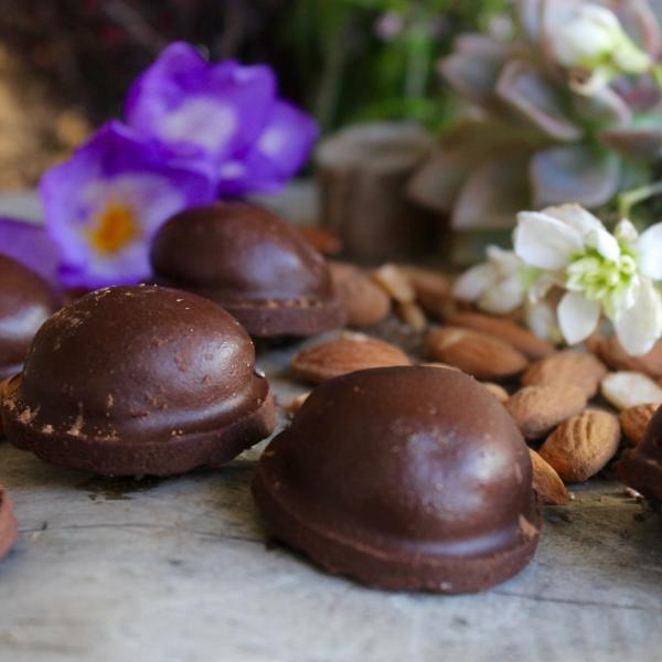 Chocolate Almond Bites (vegan) - You Are Loved Foods