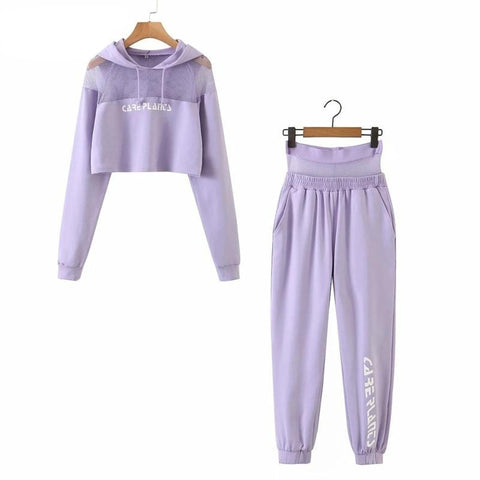 Long Sleeve Hooded Mesh Purple Pullover Top Or Elastic Pants Tracksuit Price per each  MJ916 - SexyHeksieLingerie
