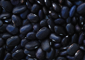 October Special! Black Beans