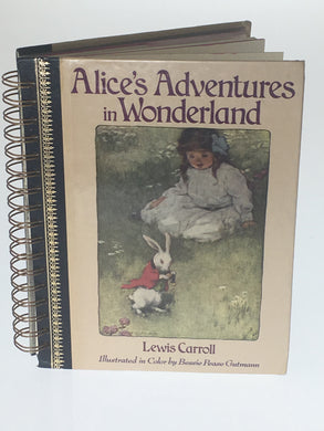 Alice's Adventurous in Wonderland