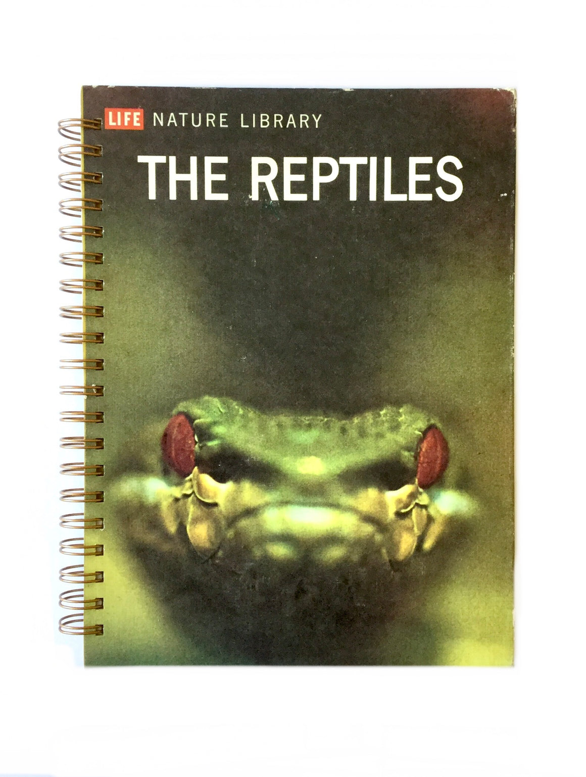 The Reptiles: Time Life-Red Barn Collections