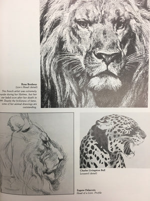 Drawing and Painting Animals-Red Barn Collections
