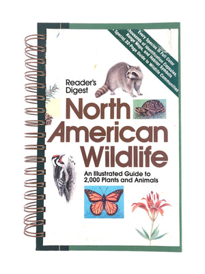 North American Wildlife-Red Barn Collections