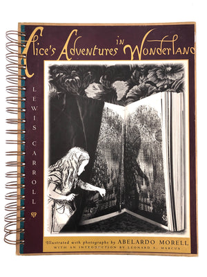Alice's Adventure in Wonderland-Red Barn Collections
