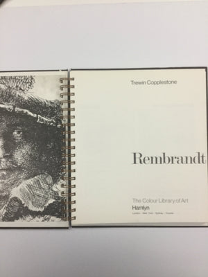 Rembrandt-Red Barn Collections