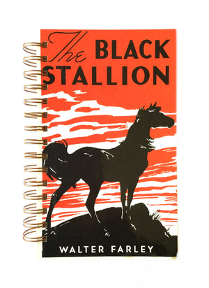 Black Stallion-Red Barn Collections