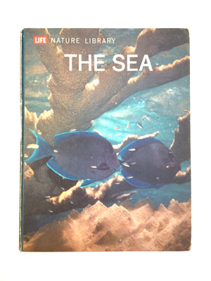 The Sea Time Life-Red Barn Collections