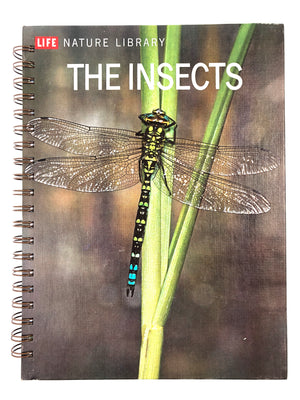 Life Nature Library: The Insects-Red Barn Collections