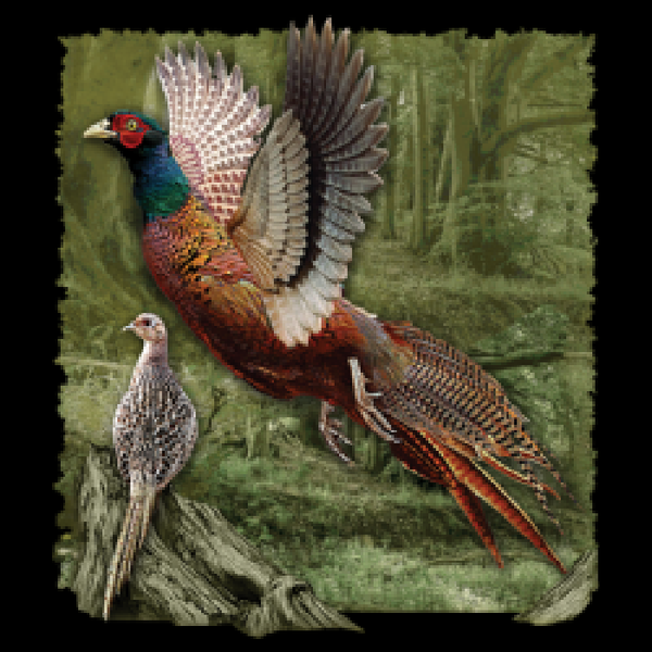 Ring Necked Pheasant Adult Unisex Short Sleeve T Shirt 17822HD2