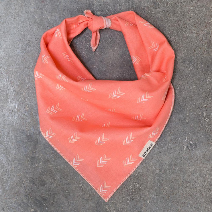 Dog Bandana - Arrow Blush - Apogee Goods