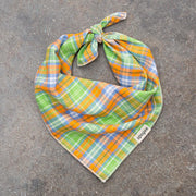 Dog Bandana - Seaside Plaid - Apogee Goods