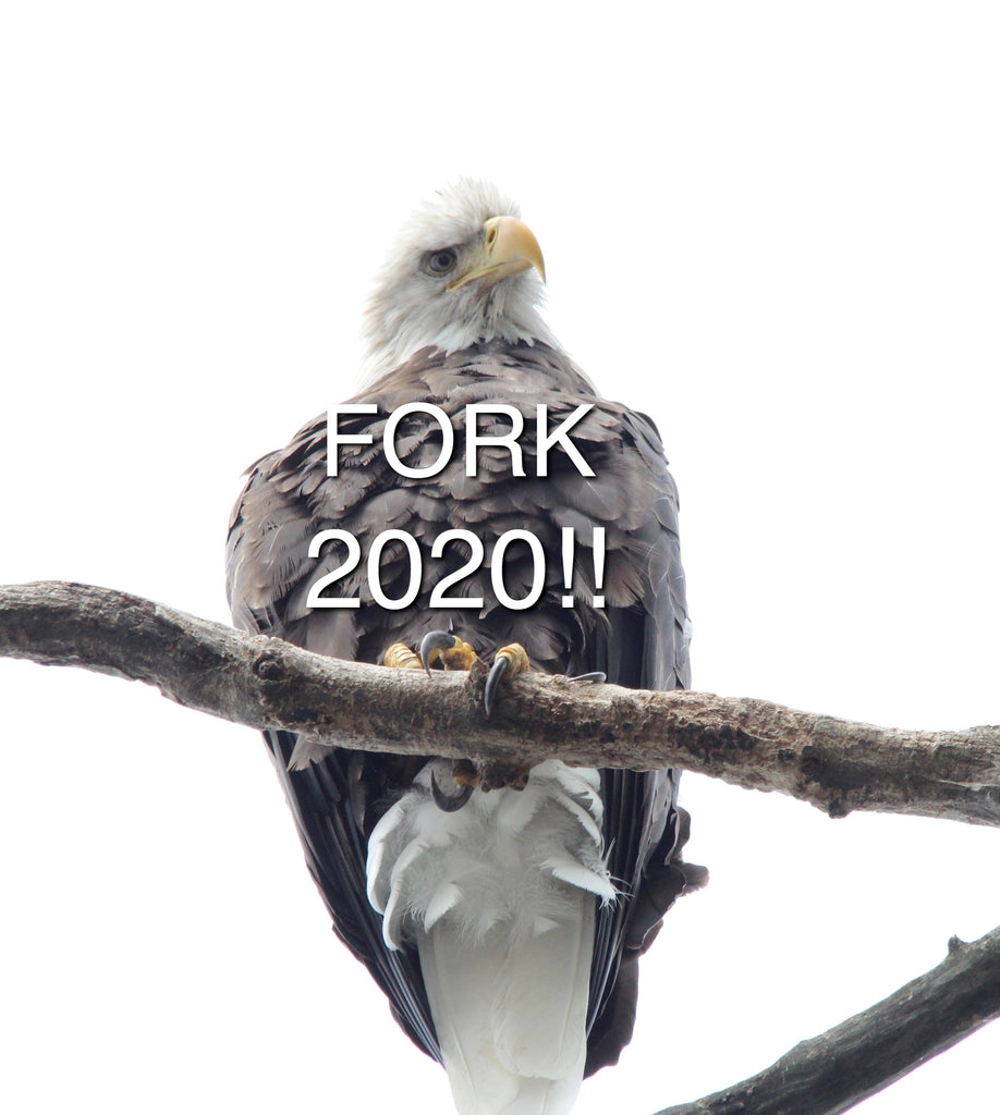 Eagle Eye - Fork 2020