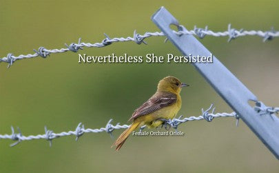 Never The Less She Persisted