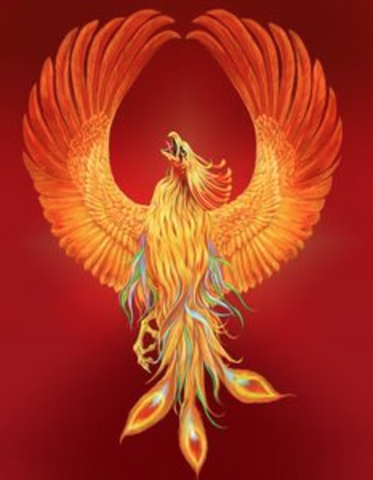 The Way of the Phoenix