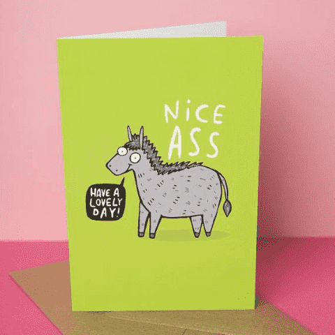 Have A Lovely Day Nice Ass Funny Anniversary Card Valentines Day Card FREE SHIPPING