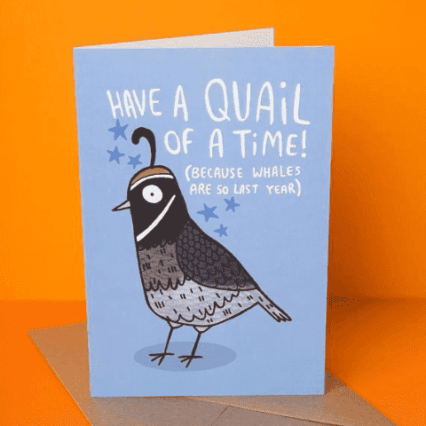 Quail of a Time Whales Are So Last Year Funny Happy Birthday Card FREE SHIPPING