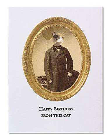 American Greetings Funny This Cat Birthday Card - Free Shipping
