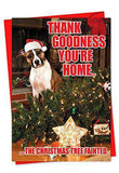 36 Boxed 'Tree Fainted' Christmas Cards with Envelopes, Happy Holidays with Silly Puppy in Santa Hat Christmas Notes, Fallen Christmas Tree & Dog Greeting Cards
