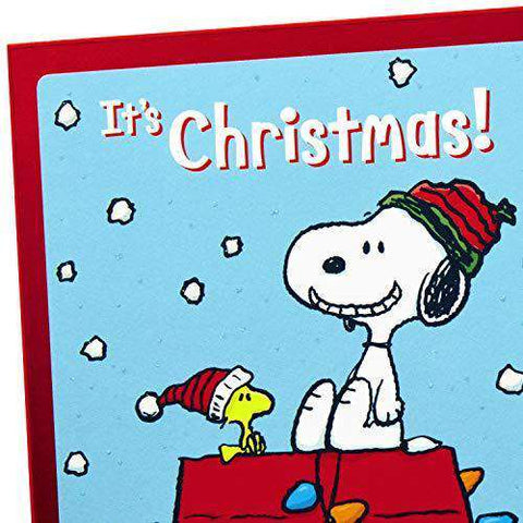 Snoopy Christmas Cards.Hallmark Peanuts Christmas Cards Assortment Snoopy And Woodstock With 6 Cards 2 Designs Free Shipping