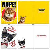 10 'Cat Birthday Birthday Assortment' Cards - Funny Greeting Cards, Cat Photos, Birthday Cards for All Ages, Stationery Note Cards - Free Shipping