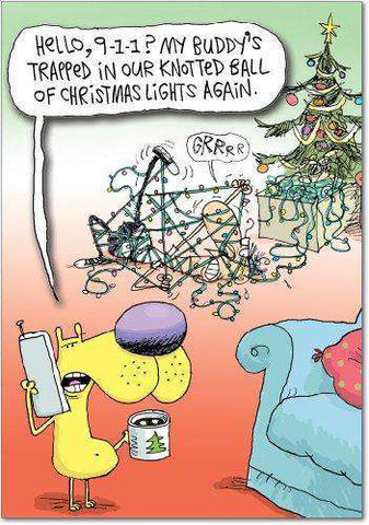 Humorous Christmas Cards.12 Box Of Tangled Lights Christmas Hilarious Christmas Greeting Card With Envelopes