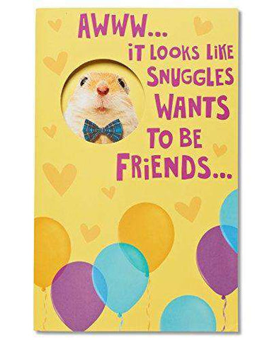 American Greetings Funny Hamster Birthday Card