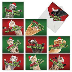 10 Assorted Christmas Note Cards - Pack of Cute Cat Christmas Cards - Seasons Greetings Gift - Free Shipping