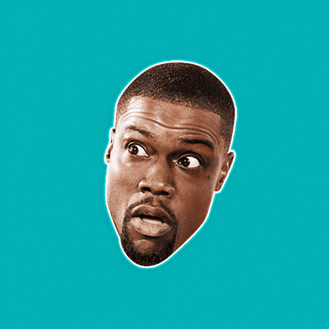 Paranoid Kevin Hart Mask by RapMasks