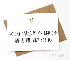 No One Turns Me On And Off The Way You Do Funny Anniversary Card Valentines Day Card FREE SHIPPING
