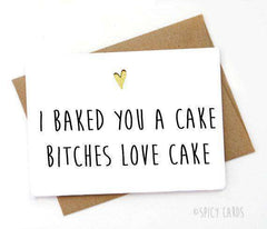 Baked You A Cake Bitches Love Cake Funny Happy Birthday Card FREE SHIPPING