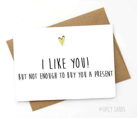 I Like You But Not Enough To Buy You A Present Funny Happy Birthday Card FREE SHIPPING