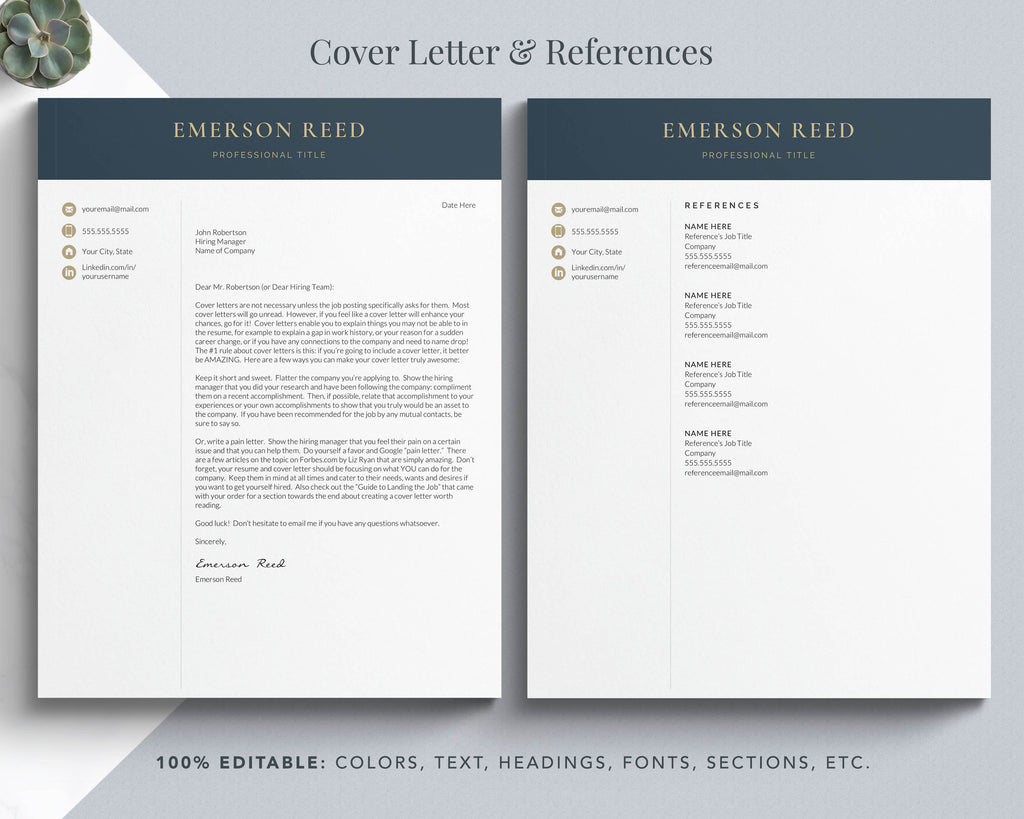 professional resume and cover letter template