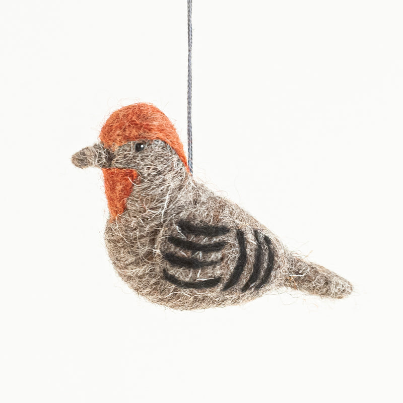 felted wool house finch