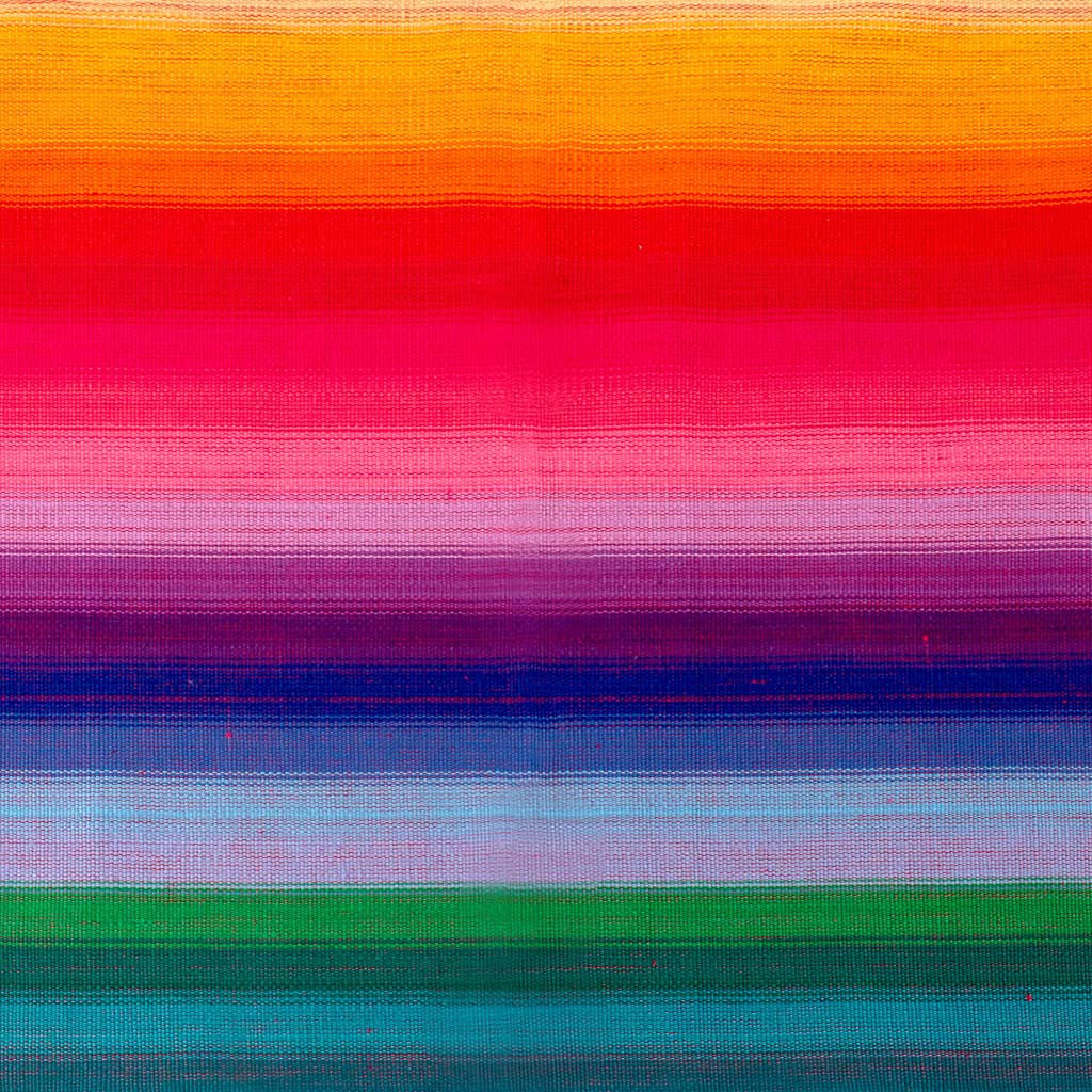Rainbow Fabric Swatch
