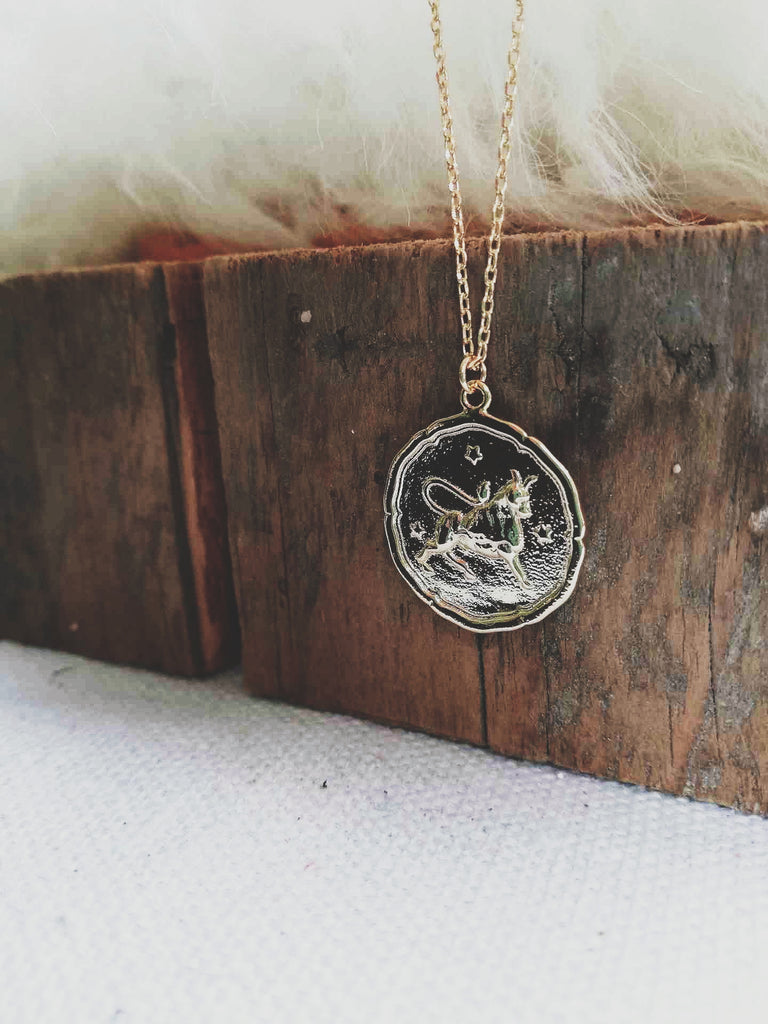 Taurus Coin Necklace