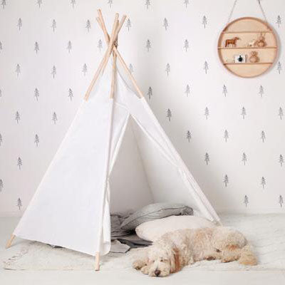 Kids Teepees and Tents