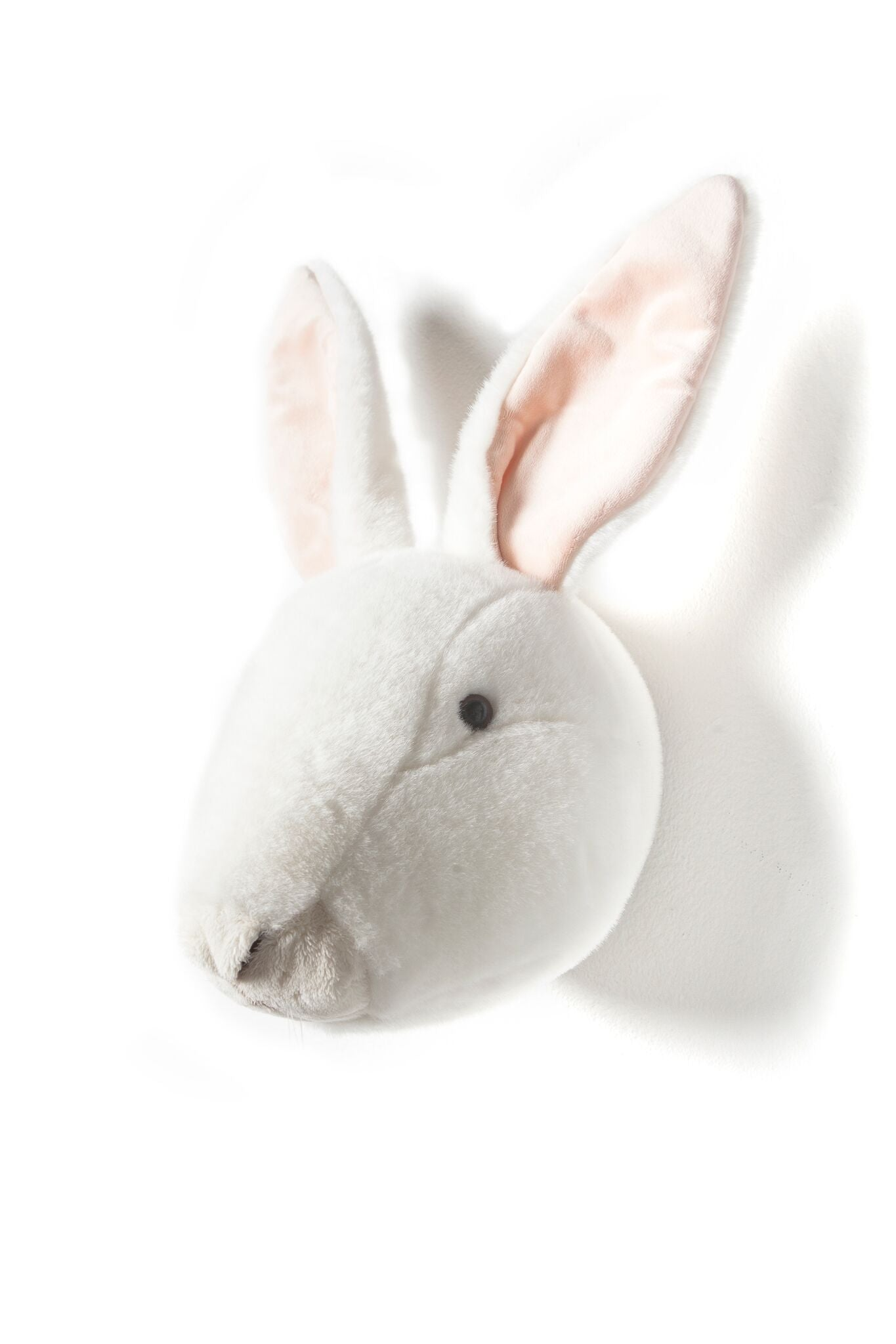 Wild and Alice the white Rabbit head plush wall decor.