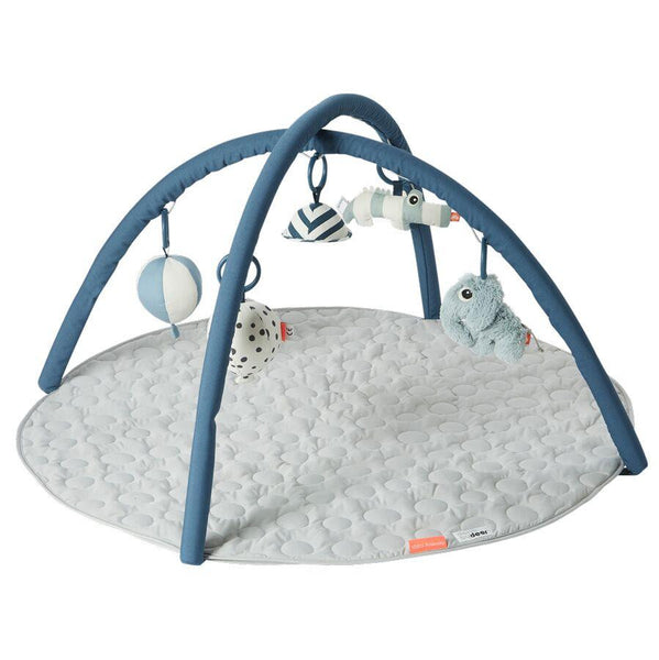 Baby's Activity Playmat and Playgym - Blue