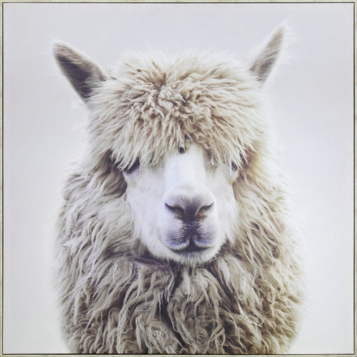 Happy Llama Wall Art - Angus & Dudley Collections