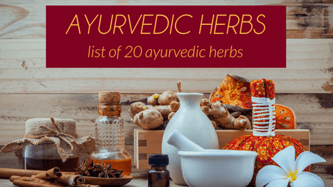 Top 20 Ayurvedic Herbs List & How They Heal Your Body