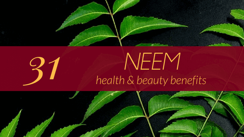 31 Staggering Health Benefits of Neem - The herb that keeps