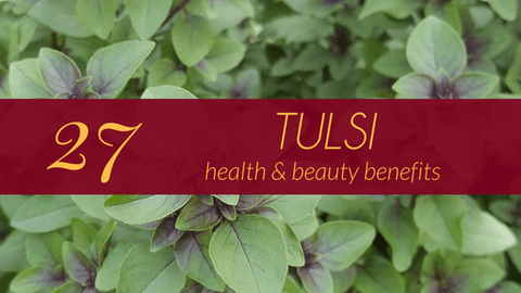 health benefits tulsi